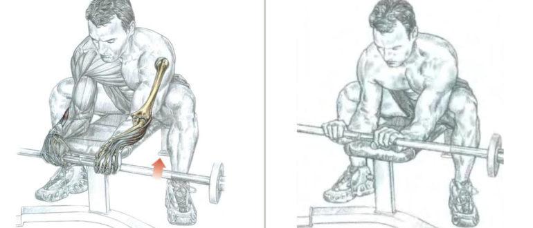 Упражнение для развития мышц предплечья