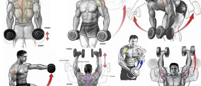 Накачать мышцы гантелями дома