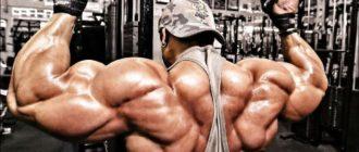 Тренировка мышц спины